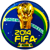 2014世界杯冠军勋章